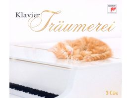 Klavier Traeumerei