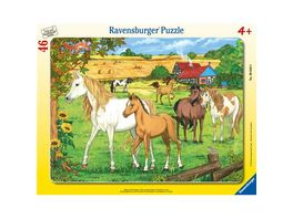 Ravensburger Rahmenpuzzle Pferde auf der Koppel 46 Teile
