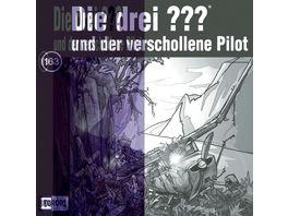 163 und der verschollene Pilot