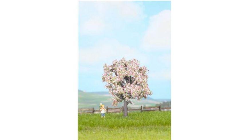 Noch Obstbaum bluehend
