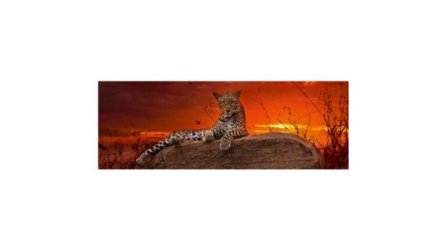 Heye Panoramapuzzle 2000 Teile Alexander von Humboldt Red Dawn