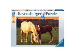 Ravensburger Puzzle Schoene Pferde 500 Teile