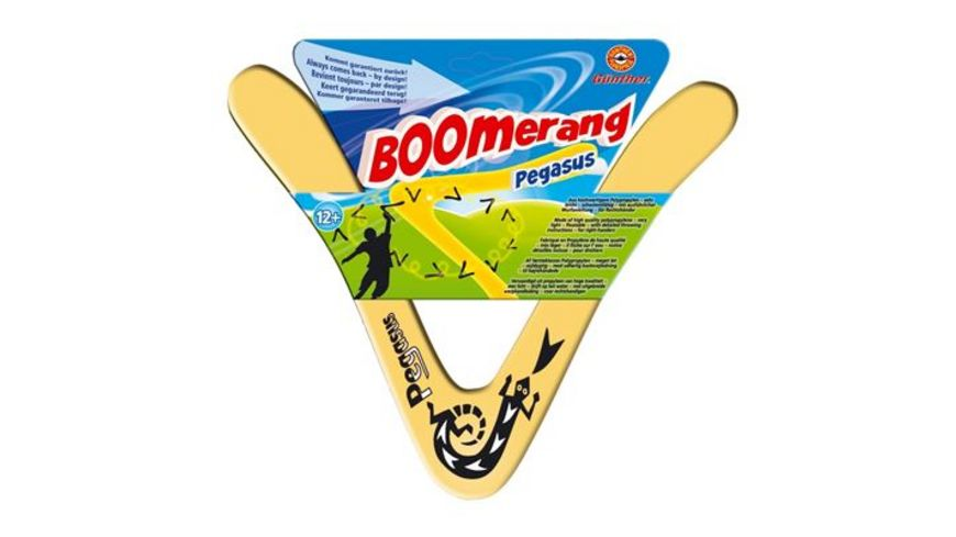 Guenther Flugmodelle Pegasus Boomerang