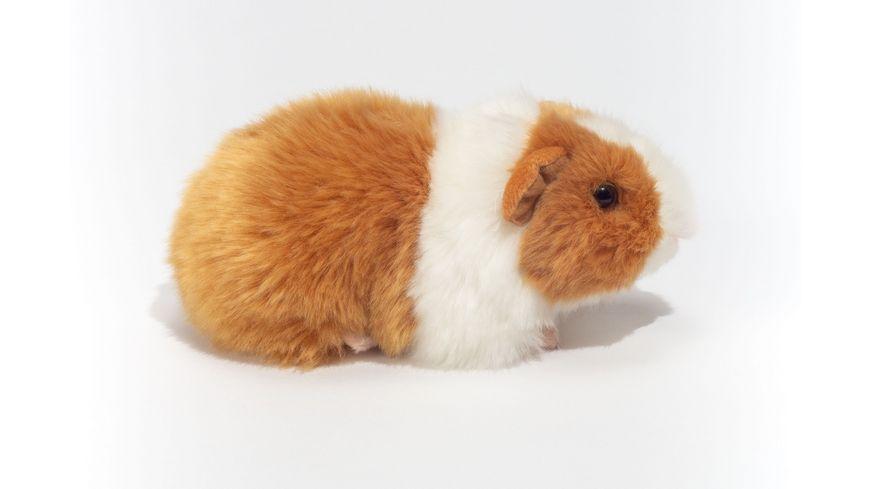 Teddy-Hermann - Meerschweinchen gold/weiß, 20 cm
