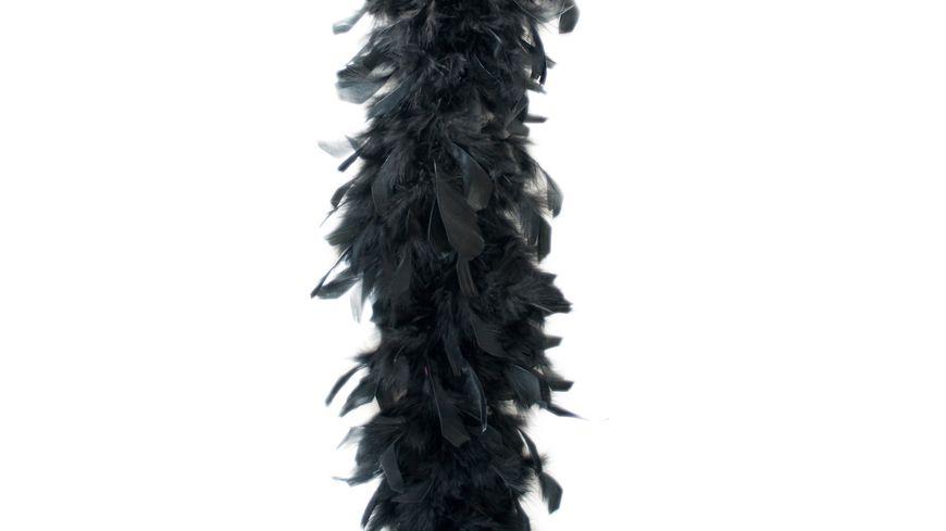 Fries Federboa 180cm schwarz