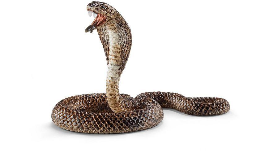 Schleich Wild Life Kobra