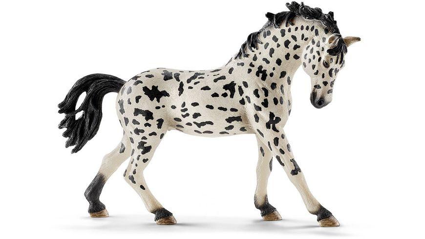 schleich horse club knabstrupper stute online. Black Bedroom Furniture Sets. Home Design Ideas