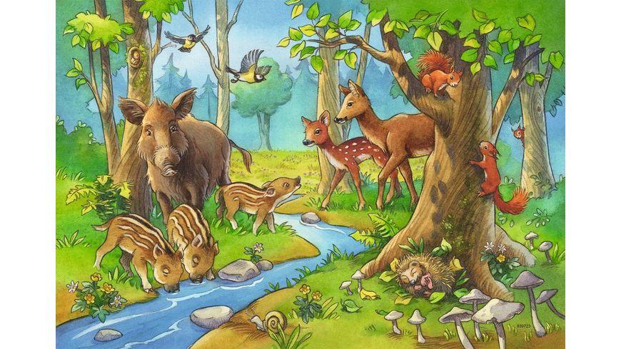 Ravensburger Puzzle Tiere des Waldes 2x24 Teile