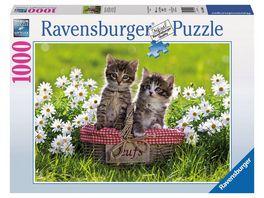 Ravensburger Puzzle Picknick auf der Wiese 1000 Teile