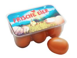 Tanner 6 Eier aus Kunststoff in Eierbox