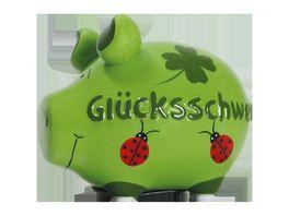 KCG Sparschwein Gluecksschwein