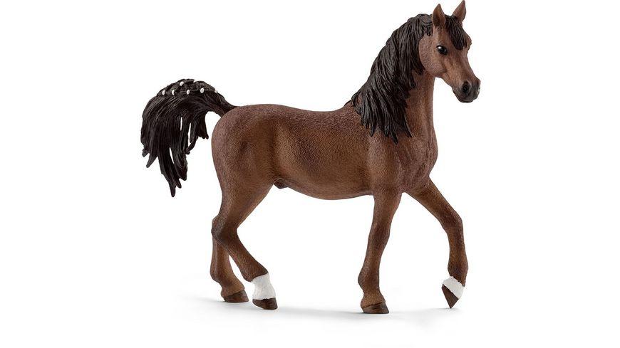 schleich horse club pferde araber hengst online. Black Bedroom Furniture Sets. Home Design Ideas