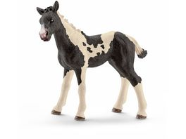 Schleich 13803 Farm World Pferde Pinto Fohlen