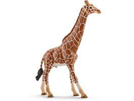 Schleich 14749 Wild Life Afrika Giraffenbulle