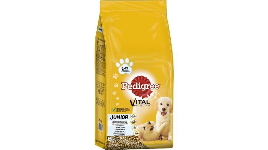 Pedigree Hundetrockenfutter Junior Medium mit Huhn und Reis