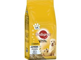 Pedigree Hundefutter Junior Medium mit Huhn und Reis