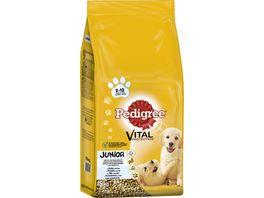 PEDIGREE Vital Protection Beutel Junior Medium mit Huhn und Reis 15kg