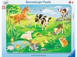 Ravensburger Puzzle Rahmenpuzzle Tiere auf der Wiese 35 Teile