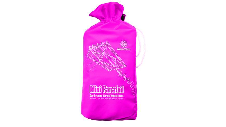 Guenther Flugmodelle Einleinerdrachen aus Polyester Pink Parafoil