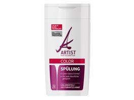 ARTIST Spuelung Color