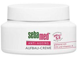 sebamed Anti Ageing Aufbau Creme mit Q10