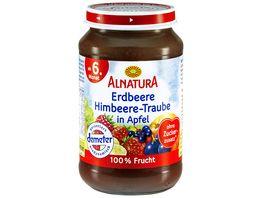 Alnatura Fruechtezubereitung Erdbeere Himbeere Traube