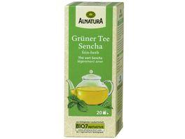 Alnatura Gruener Tee Sencha 20 Beutel