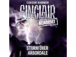 Sturm ueber Arbordale