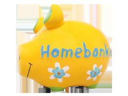 KCG Sparschwein Homebanking