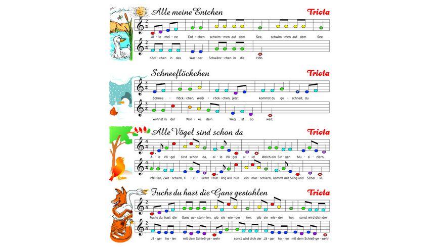 Seydel 70210 Triola 12 Blasharmonika