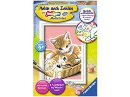 Ravensburger Beschaeftigung Malen nach Zahlen mit farbigen Motivlinien Katzenbabys