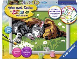 Ravensburger Beschaeftigung Malen nach Zahlen mit farbigen Motivlinien Tiefer Schlaf