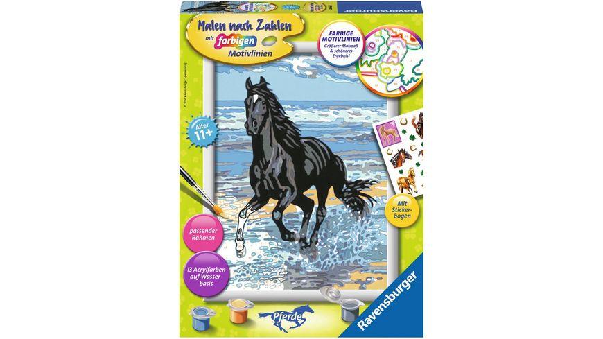 Ravensburger Beschaeftigung Malen nach Zahlen mit farbigen Motivlinien Pferd am Strand