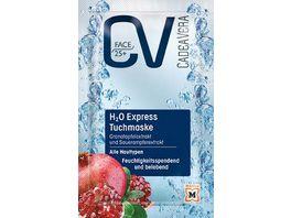 CV Face Tuchmaske H2O Express