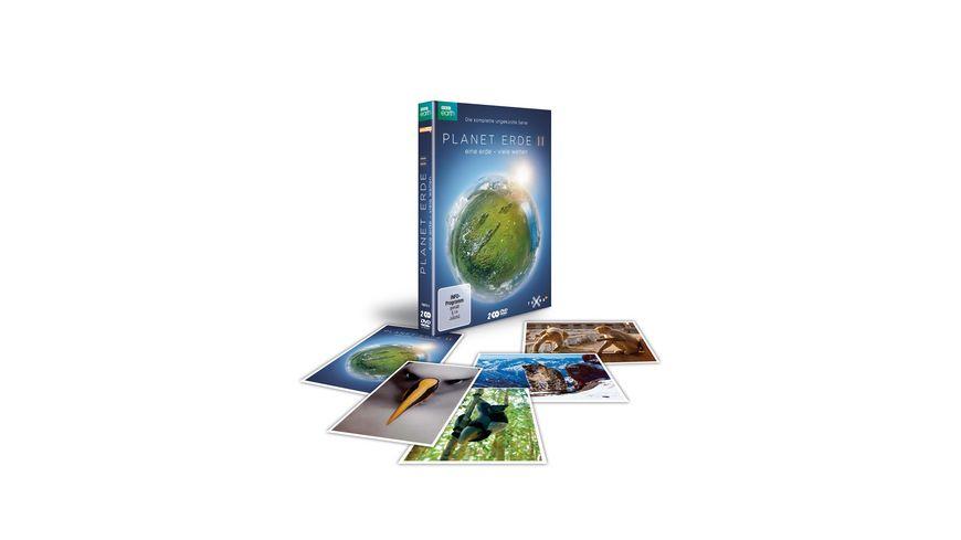 Planet Erde DVD