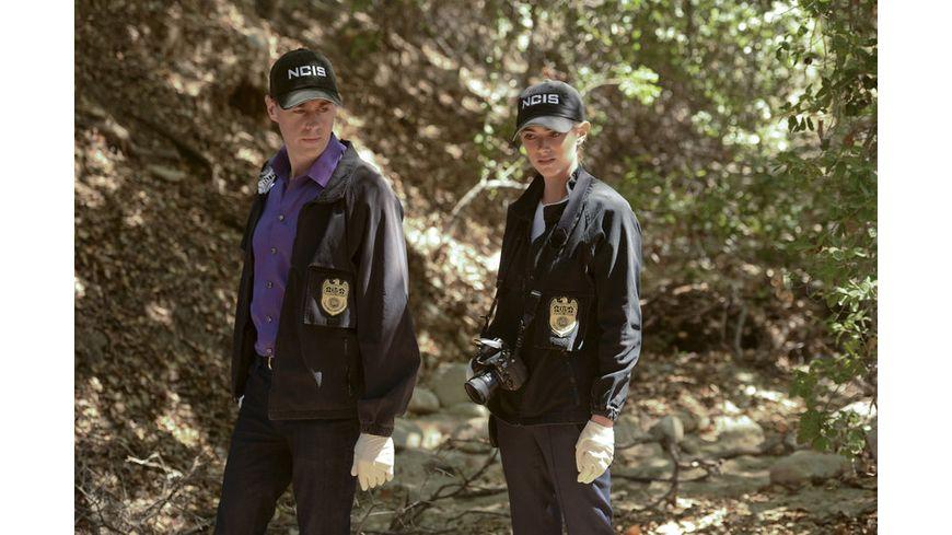 NCIS Season 13 DVD
