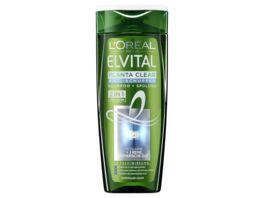 L OREAL PARIS ELVITAL Shampoo Planta Clear 2 in 1
