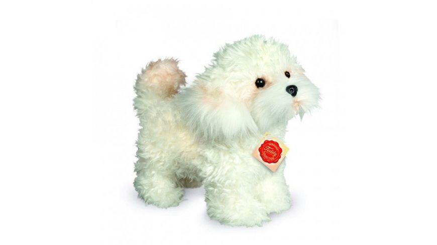 Teddy Hermann Hunde Bolonka Zwetna Welpe stehend 23 cm