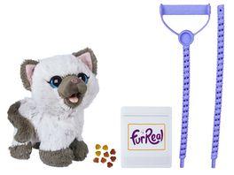 Hasbro FurReal Friends Kami Mein ich muss mal Kaetzchen
