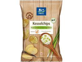 BIO PRIMO Kesselchips Sourcream Onion