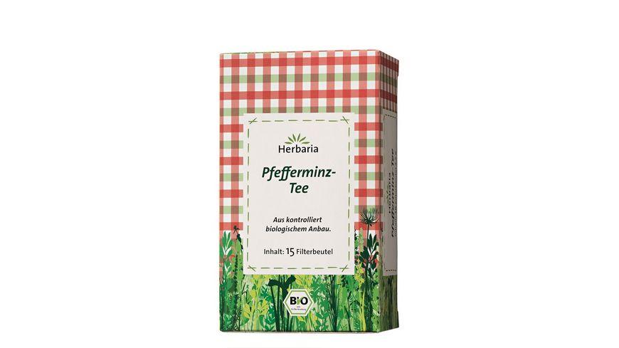 Herbaria Pfefferminz Tee bio 15 FB