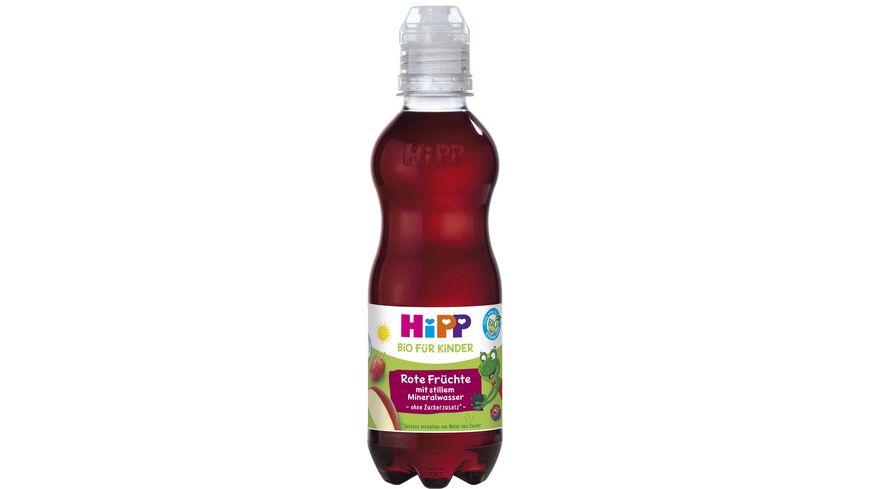 HiPP Kinder Getraenk mit stillem Mineralwasser Rote Fruechte mit stillem Mineralwasser