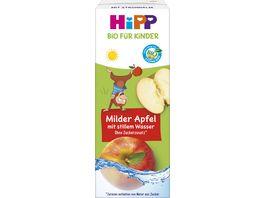 HiPP Bio Kindergetraenk mit Trinkhalm 200 ml Tetrapak Milder Apfel mit stillem Wasser ab 1