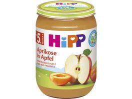 HiPP Fruechte 190g Aprikose in Apfel ohne Zuckerzusatz 100 BIO Fruechte ab 5 Monat