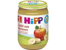 HiPP Fruechte 250g Aepfel mit Bananen ohne Zuckerzusatz 100 BIO Fruechte ab 5 Monat
