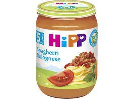 HiPP Menues nach dem 4 Monat Spaghetti Bolognese