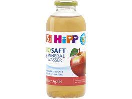 HiPP BIO Saft und Mineralwasser 0 5l Milder Apfel ohne Zuckerzusatz ab 5 Monat