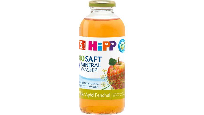 HiPP Bio Tee Saft Fenchel Tee mit Apfel