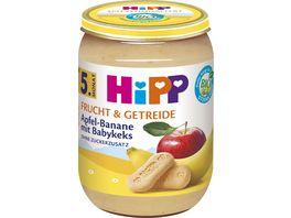 HiPP Babyglaeschen Brei Apfel Banane mit Babykeks