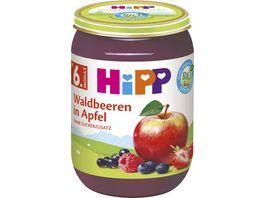 Hipp Fruechte 190 g Waldbeeren in Apfel ohne Zuckerzusatz 100 BIO Fruechte ab 6 Monat
